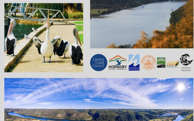 'Our Hawkesbury' photography competition opens to mark World Rivers Day